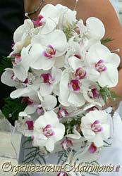 bouquet sposa orchidea